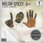 New Video: Mallam Spicey-1005 Naira Bling (Free Cure Terry G Diss free madness testing microphone)
