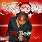 DJ Bee presents Funky Afro tunes Mix Vol 1