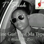 T' Sleek – Fine Gurl (Just Ma Type)