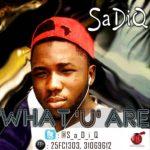 SaDiQ – What U Are