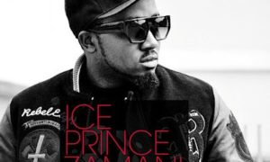 iceprince_whosendU