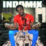 Indomix – Owo ft Sound Sultan, Reminisce,  W4, TM9ja, Minjin & Ruggedman