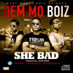 Dem Mo Boiz – She Bad