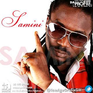 SAMINI-DaProFiLe