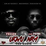 Pucado – Ukwu Nka (Remix) f. Phyno