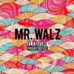Mr. Walz – Elegushi (Prod by DeeVee)