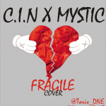 C.I.N x Mystic – Fragile