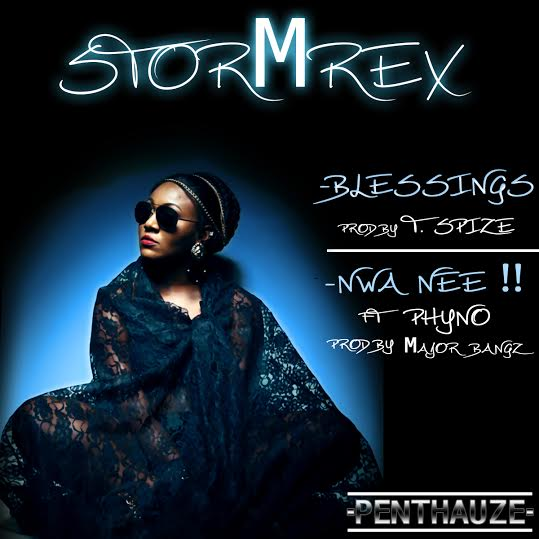 StormRex-Blessings-Nwa-Nee-Art