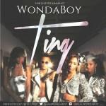 Wondaboy – Ting