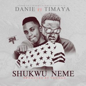 Danie-Timaya-Shukwu-Neme-Art