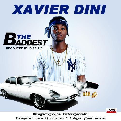 Xavier-Dini