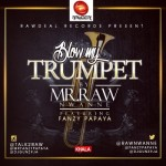 Mr Raw – Blow My Trumpet ft. Fanzy Papaya