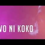 VIDEO: Davido – Owo Ni Koko