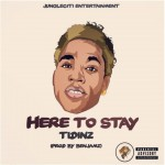 "Tidinz – ""Here To Stay"""