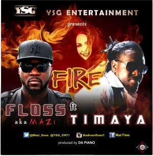 floss-fire-dp-1-300x306