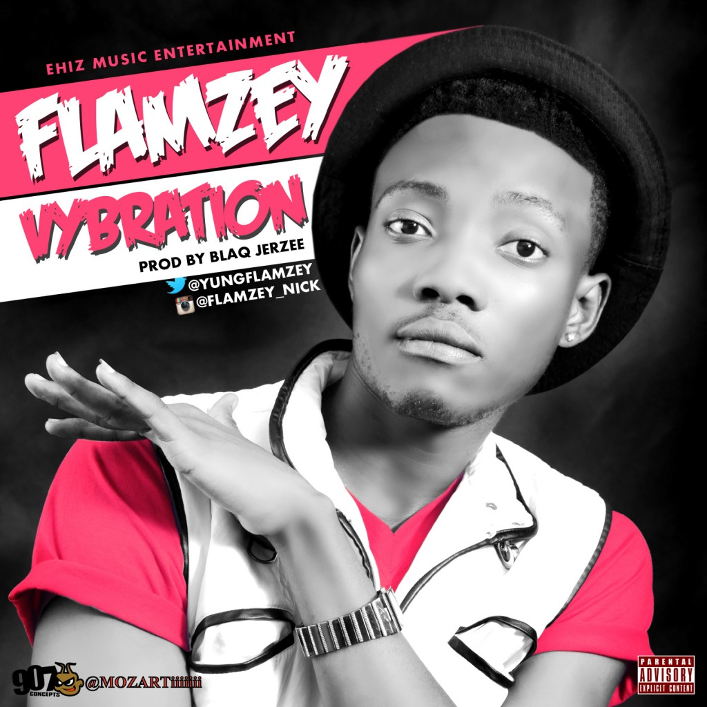 Flamzy vibration artwork