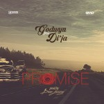 Godwyn – Promise Ft Di'Ja [Prod by. Don Jazzy]