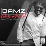 "Damz – ""Carry Am Go"""