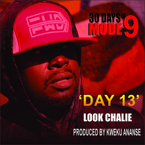 Day 13 - Modenine