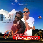 "Pelepele  – ""The Reason"" ft. Small Doctor"