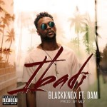 "BlackKnox – ""Ibadi"" ft. Dam (Prod. by MLV)"