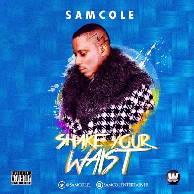 SAMCOLE ARTWORK(2)