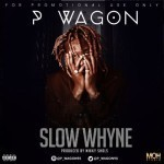 "P Wagon – ""Slow Whyne"""