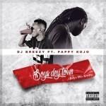 """DJ Breezy – """"Boys Dey Town"""" ft. Pappy Kojo"""