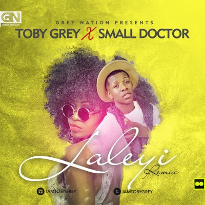 Toby Grey - Laleyi (Night Train) [ART] Small Doctor