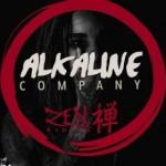 "Alkaline – ""Company"" (Zen Riddim)"