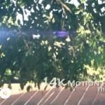 "VIDEO: Mr. Beez – ""Pretty Girl"""