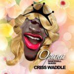 """Criss Waddle – """"Opana"""" (Shatta Wale Diss)"""