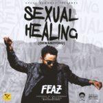 "Feaz – ""Sexual Healing"" (Okwaniyohu)"