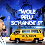 """Mr. Sheddy –  """"Wole Pelu Schange e"""""""