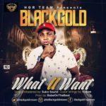 "BlackGold – ""What U Want"""