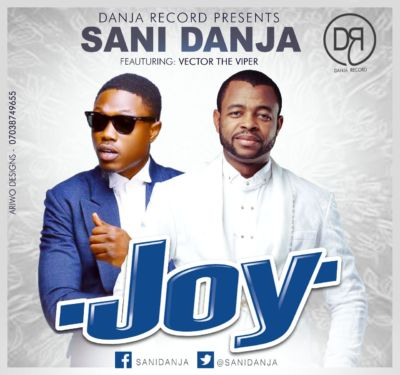 sani danja x vector - joy artwork