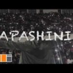 "VIDEO: StoneBwoy – ""Sapashini"" (Viral)"