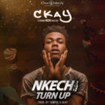 "Ckay – ""Nkechi Turn Up"""