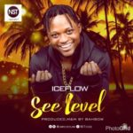"Ice Flow – ""See Level"""