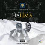 "DJ Baddo – ""HaliMa"" ft. Seriki"