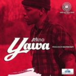 VIDEO PREMIERE: Tekno – Yawa