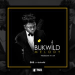 AUDIO + VIDEO: Bukwild – Melody