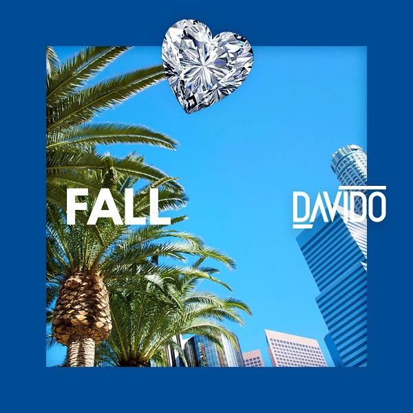 Davido Fall