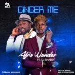 Afro Wonder – Ginger Me ft. DJ Shabsy