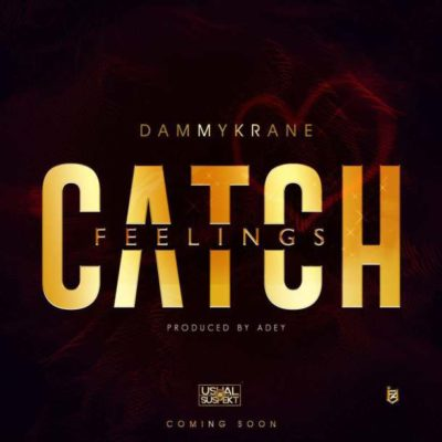 Image result for Dammy Krane – Catch Feelings