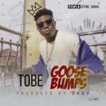 Tobe – Goosebumps (Prod. By CKay)