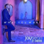 Jay Sean – What You Want ft. Davido [New Song]