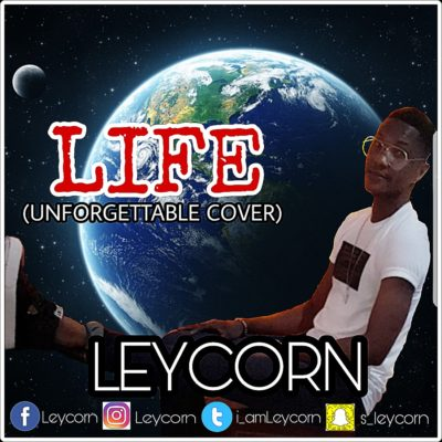 Leycorn – LIFE (Unforgettable Cover)