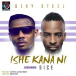 Sexy Steel – Sorry + Ishe Kana Nii ft. 9ice [New Song]