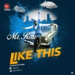 Mr. Raw – Like This [New Song]